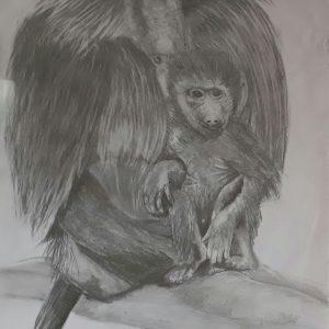 2017-06-Affen02